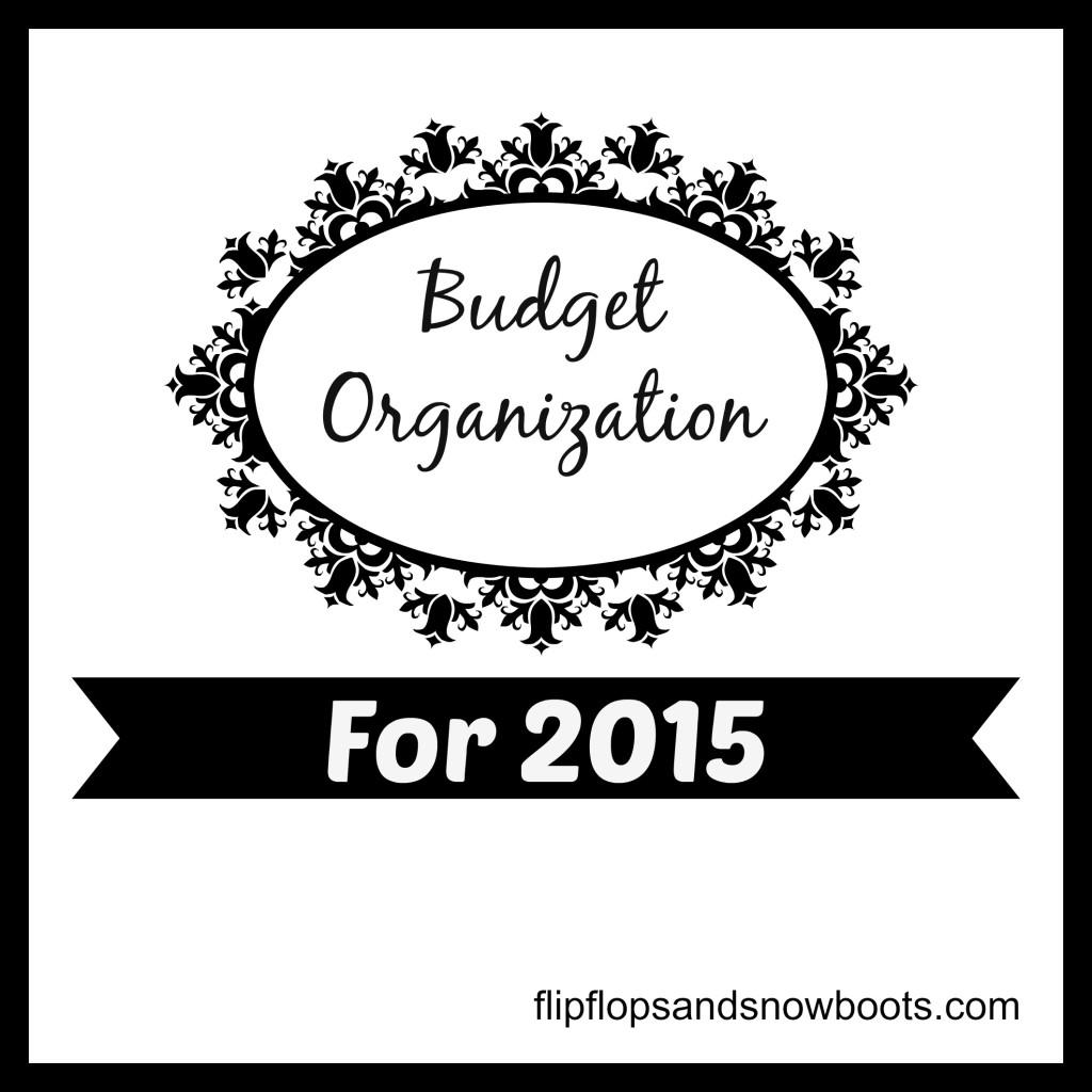 budget organization 2015