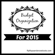 Budget Organization for 2015